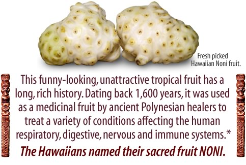 Noni fruit from Hawaii